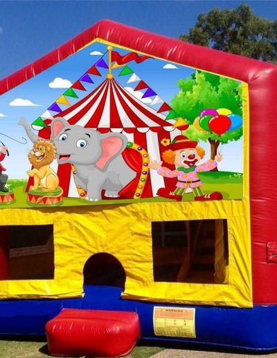 slide and bounce circus